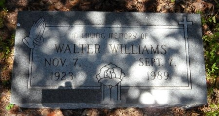 WILLIAMS, WALTER - Drew County, Arkansas | WALTER WILLIAMS - Arkansas Gravestone Photos