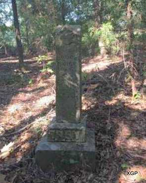 IRBY, LAURA - Faulkner County, Arkansas   LAURA IRBY - Arkansas Gravestone Photos