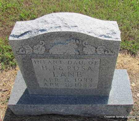 LANE, INFANT DAUGHTER (1933) - Faulkner County, Arkansas   INFANT DAUGHTER (1933) LANE - Arkansas Gravestone Photos