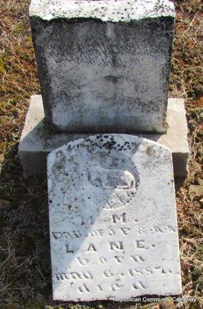 LANE, M.M. - Faulkner County, Arkansas | M.M. LANE - Arkansas Gravestone Photos