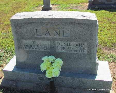 LANE, THOMAS JACKSON - Faulkner County, Arkansas | THOMAS JACKSON LANE - Arkansas Gravestone Photos