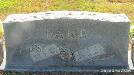 LANE, OLLIE BELL - Faulkner County, Arkansas   OLLIE BELL LANE - Arkansas Gravestone Photos
