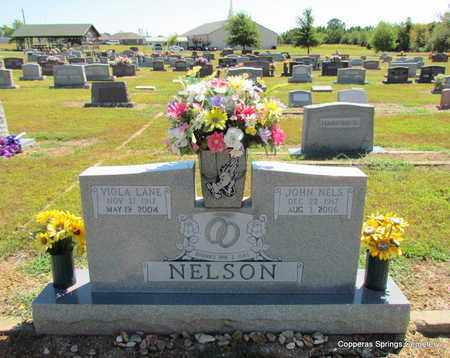 NELSON, VIOLA FITE - Faulkner County, Arkansas | VIOLA FITE NELSON - Arkansas Gravestone Photos