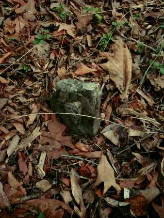 PRIMITIVE STONES, UNKNOWNS PLEASNT BRANCH - Faulkner County, Arkansas   UNKNOWNS PLEASNT BRANCH PRIMITIVE STONES - Arkansas Gravestone Photos