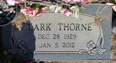 THORNE, CLARK (PUBLIC SERVANT) - Faulkner County, Arkansas   CLARK (PUBLIC SERVANT) THORNE - Arkansas Gravestone Photos
