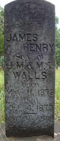 WALLS, JAMES HENRY - Faulkner County, Arkansas | JAMES HENRY WALLS - Arkansas Gravestone Photos