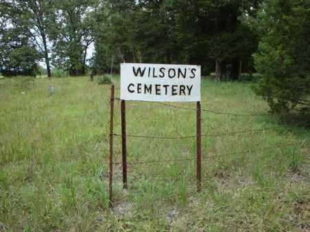 *WILSON'S ENTRANCE,  - Faulkner County, Arkansas |  *WILSON'S ENTRANCE - Arkansas Gravestone Photos