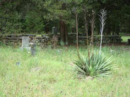 *WILSON'S OVERVIEW 2,  - Faulkner County, Arkansas |  *WILSON'S OVERVIEW 2 - Arkansas Gravestone Photos