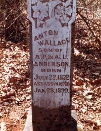ANDERSON, ANTON WALLACE - Franklin County, Arkansas   ANTON WALLACE ANDERSON - Arkansas Gravestone Photos