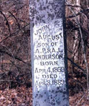 ANDERSON, JOHN AUGUST - Franklin County, Arkansas | JOHN AUGUST ANDERSON - Arkansas Gravestone Photos