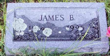 BAKER, JAMES B - Franklin County, Arkansas | JAMES B BAKER - Arkansas Gravestone Photos