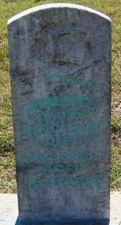 CLARK, LILLIE - Franklin County, Arkansas | LILLIE CLARK - Arkansas Gravestone Photos
