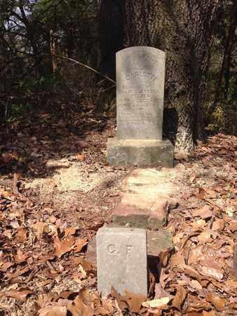 FELKER, CARRRLOTTE - Franklin County, Arkansas   CARRRLOTTE FELKER - Arkansas Gravestone Photos
