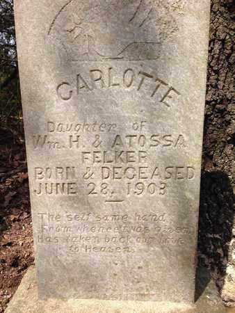 FELKER, CARLOTTE (CLOSEUP) - Franklin County, Arkansas   CARLOTTE (CLOSEUP) FELKER - Arkansas Gravestone Photos