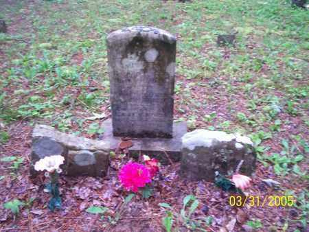 FORD, MARY E - Franklin County, Arkansas | MARY E FORD - Arkansas Gravestone Photos