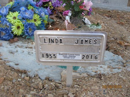 JAMES, LINDA JOYCE - Franklin County, Arkansas   LINDA JOYCE JAMES - Arkansas Gravestone Photos