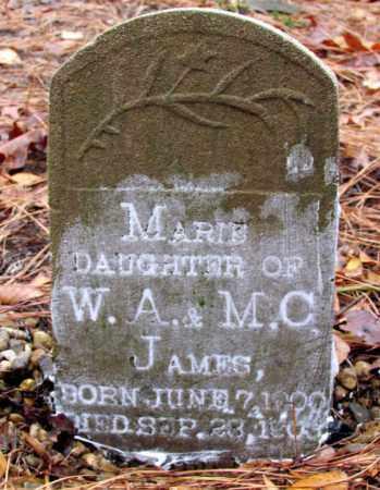 JAMES, MARIE - Franklin County, Arkansas   MARIE JAMES - Arkansas Gravestone Photos