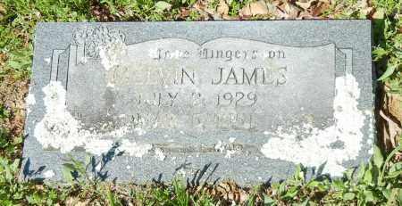 JAMES, MELVIN BAILEY - Franklin County, Arkansas | MELVIN BAILEY JAMES - Arkansas Gravestone Photos