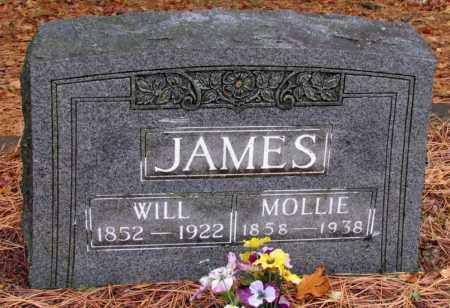 JAMES, WILL - Franklin County, Arkansas | WILL JAMES - Arkansas Gravestone Photos
