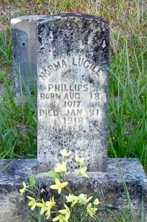 PHILLIPS, NORMA LUCILE - Franklin County, Arkansas | NORMA LUCILE PHILLIPS - Arkansas Gravestone Photos
