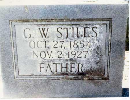 STILES, G W - Franklin County, Arkansas | G W STILES - Arkansas Gravestone Photos