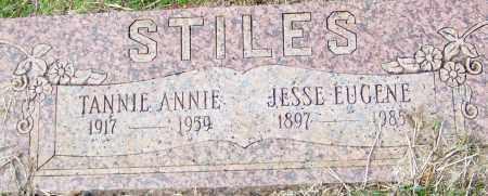 STILES, JESSE EUGENE - Franklin County, Arkansas | JESSE EUGENE STILES - Arkansas Gravestone Photos