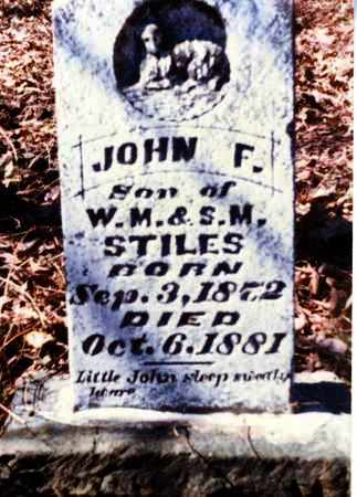 STILES, JOHN F - Franklin County, Arkansas   JOHN F STILES - Arkansas Gravestone Photos