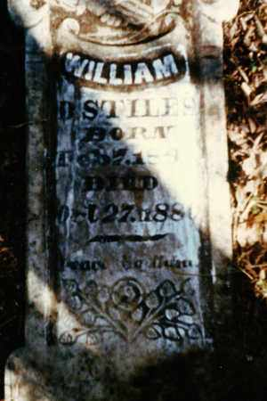 STILES, WILLIAM D - Franklin County, Arkansas | WILLIAM D STILES - Arkansas Gravestone Photos