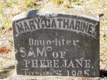TURNER, MARY CATHARINE - Franklin County, Arkansas | MARY CATHARINE TURNER - Arkansas Gravestone Photos