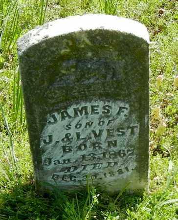 VEST, JAMES F - Franklin County, Arkansas   JAMES F VEST - Arkansas Gravestone Photos