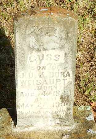 WEISAUPT, GUSS - Franklin County, Arkansas | GUSS WEISAUPT - Arkansas Gravestone Photos