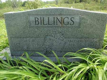 BILLINGS, AMANDA M - Fulton County, Arkansas | AMANDA M BILLINGS - Arkansas Gravestone Photos