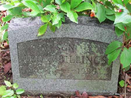 BILLINGS, LEO G - Fulton County, Arkansas | LEO G BILLINGS - Arkansas Gravestone Photos