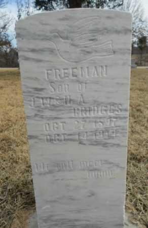 BRIDGES, RICHARD FREEMAN - Fulton County, Arkansas   RICHARD FREEMAN BRIDGES - Arkansas Gravestone Photos