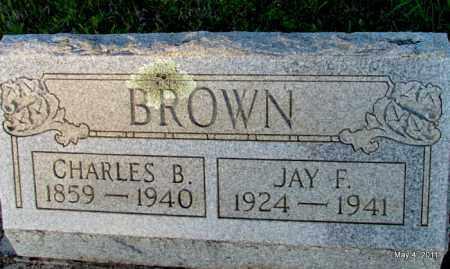 BROWN, CHARLES B - Fulton County, Arkansas | CHARLES B BROWN - Arkansas Gravestone Photos