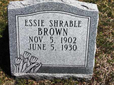 BROWN, ESSIE - Fulton County, Arkansas | ESSIE BROWN - Arkansas Gravestone Photos