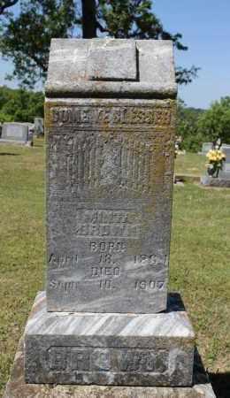 BROWN, MINTA - Fulton County, Arkansas   MINTA BROWN - Arkansas Gravestone Photos