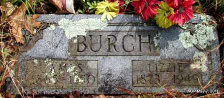 BURCH, JAMES - Fulton County, Arkansas | JAMES BURCH - Arkansas Gravestone Photos