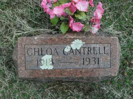 CANTRELL, CHLOA - Fulton County, Arkansas | CHLOA CANTRELL - Arkansas Gravestone Photos