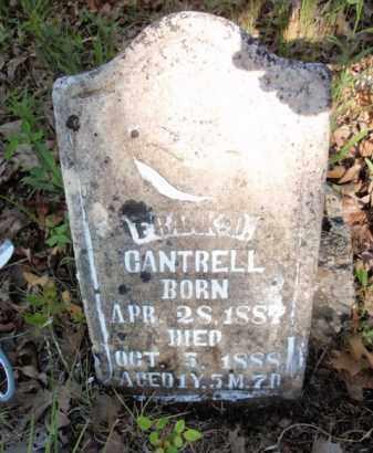 CANTRELL, FRANK D - Fulton County, Arkansas | FRANK D CANTRELL - Arkansas Gravestone Photos
