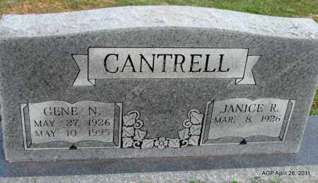 CANTRELL, GENE N - Fulton County, Arkansas | GENE N CANTRELL - Arkansas Gravestone Photos