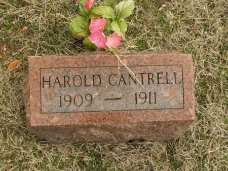 CANTRELL, HAROLD - Fulton County, Arkansas | HAROLD CANTRELL - Arkansas Gravestone Photos