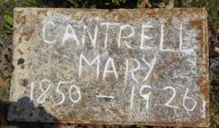 CANTRELL, MARY LUCINDIE - Fulton County, Arkansas | MARY LUCINDIE CANTRELL - Arkansas Gravestone Photos