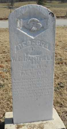 CANTRELL, REBECCA CLEMENTINE - Fulton County, Arkansas | REBECCA CLEMENTINE CANTRELL - Arkansas Gravestone Photos