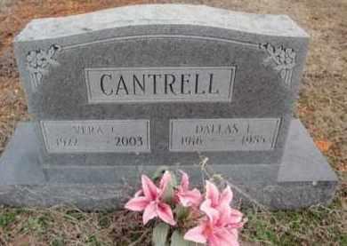 CANTRELL, DALLAS LEWIS - Fulton County, Arkansas | DALLAS LEWIS CANTRELL - Arkansas Gravestone Photos