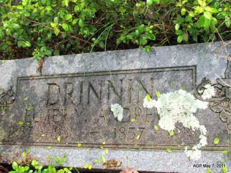 DRINNIN, ELMER Y - Fulton County, Arkansas | ELMER Y DRINNIN - Arkansas Gravestone Photos