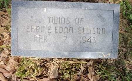 ELLISON, TWINS - Fulton County, Arkansas   TWINS ELLISON - Arkansas Gravestone Photos