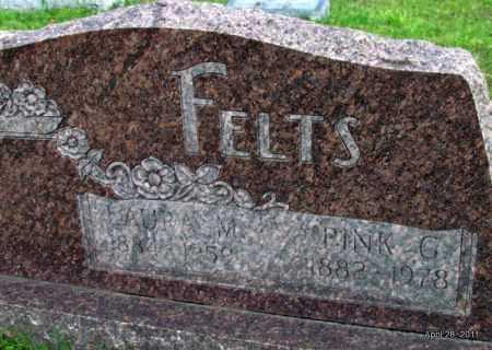 FELTS, PINK G - Fulton County, Arkansas | PINK G FELTS - Arkansas Gravestone Photos