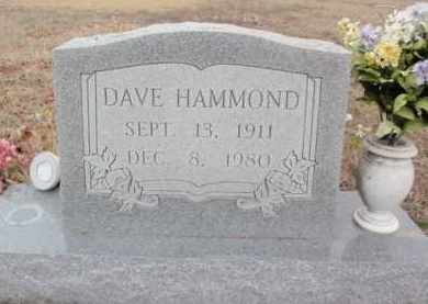 HAMMOND, DAVE - Fulton County, Arkansas | DAVE HAMMOND - Arkansas Gravestone Photos