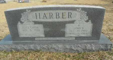 METHVIN HARBER, ALICE CHLOE - Fulton County, Arkansas | ALICE CHLOE METHVIN HARBER - Arkansas Gravestone Photos